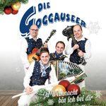 die_goggauseer_2015_mic