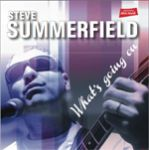 steve_summerfield_2013